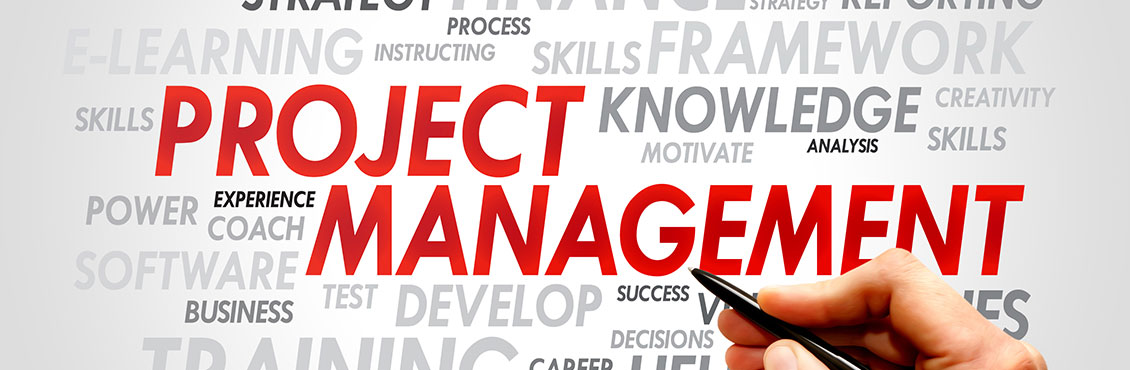 Project Consultancy & Management